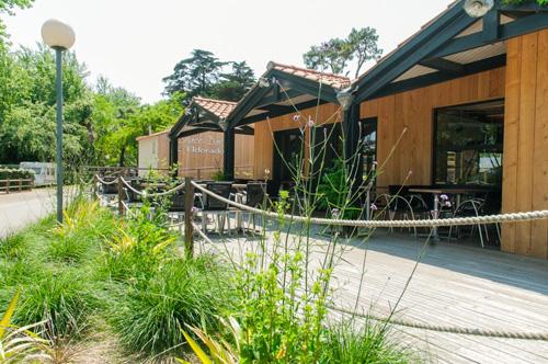 Découvrez nos bons plans dans notre camping en Vendée