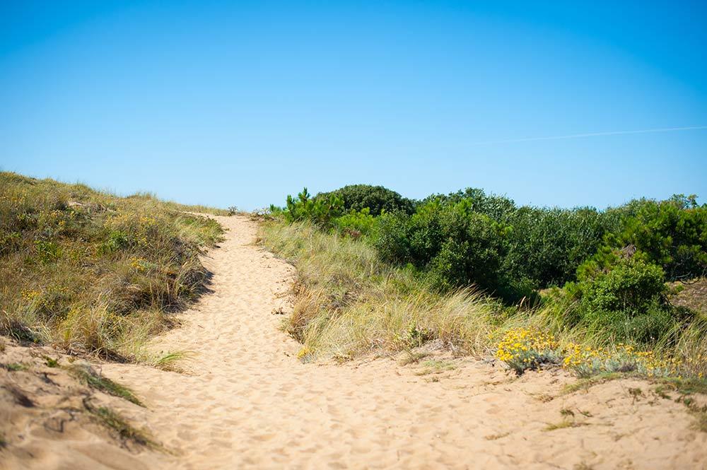 Direkter Zugang zum Strand