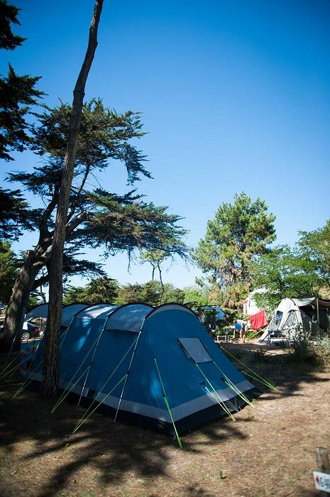 Emplacement au camping Les Cyprès proche Brétignolles sur mer
